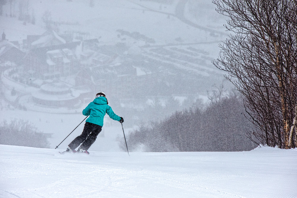 Mary Simmons storm skiing at Sugarbush.