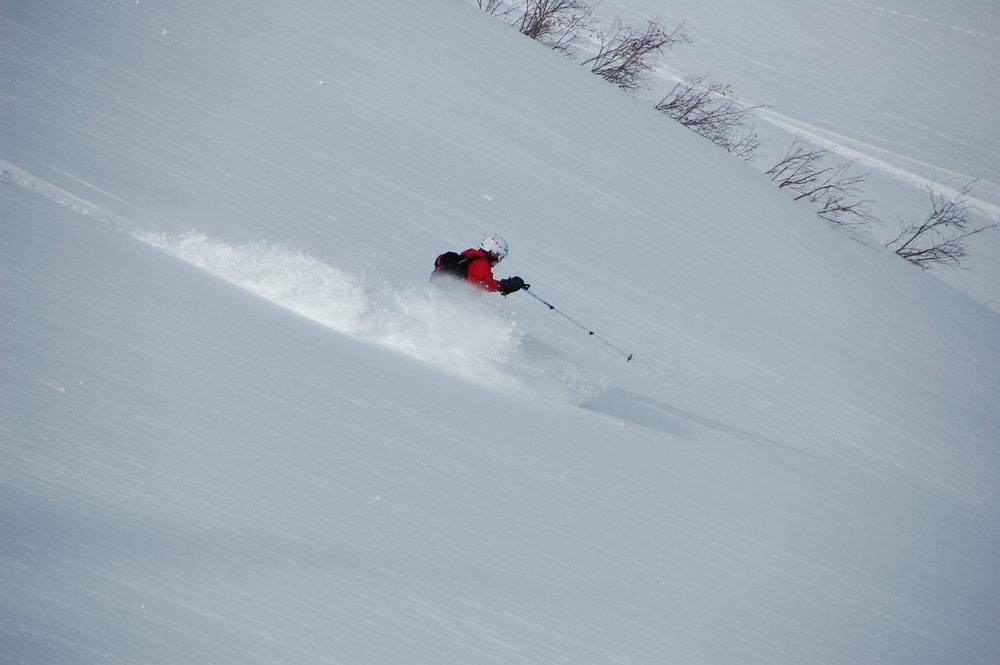 Fernie Alpine - ©Tore Klevenberg | Hokkis @ Skiinfo Lounge