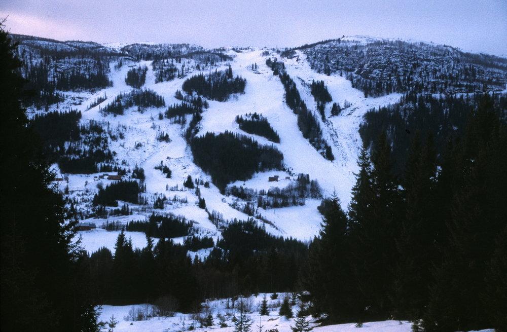 Ål - ©Dez. 2003 | martingroth @ Skiinfo Lounge