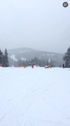 Great day on the mountain today with around 8 inches of snow dropped today with more coming tonight! Lots of wind today with whiteout conditions up on the mountain later in the afternoon.