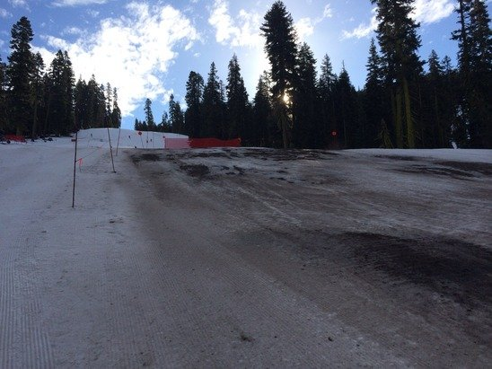 A picture is worth a thousand words. This is the lower part of Beaver. I don't know how much longer they can keep the West Bowl open.  Maybe a week or two at best. Pray for snow.