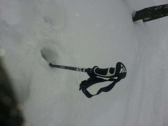 amazing powder day  with snow falling all day Trees had fresh tracks allday long.