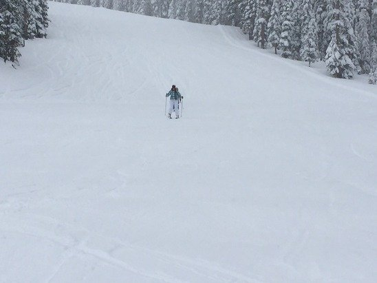 Amazing skiing/boarding this weekend. I'm guessing about 20+/- inches with this storm. Lots and lots of powder.