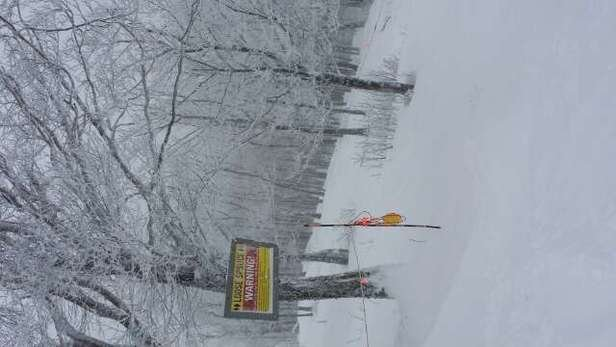 Epic powder day today @ Okemo.  Best conditions since 1992.  just do it!