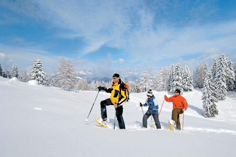 Snowshoers in Austria