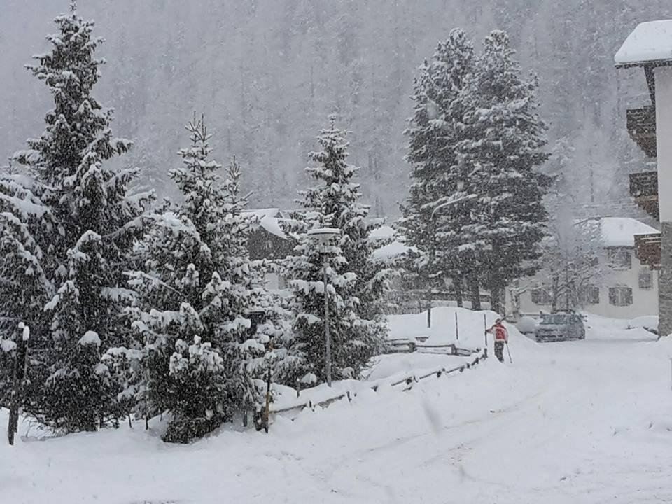 Viel Neuschnee gab es am 24. Februar am Ortler  - ©Ferienregion Ortler Facebook