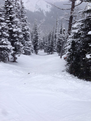 Monster snow in the glades! Best day at Nakiska in a couple of years!