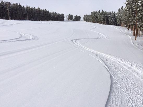 Breckenridge - First Hand Ski Report