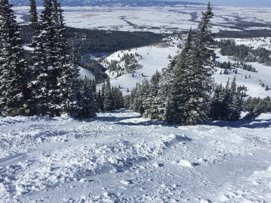 Grand Targhee Resort - Really soft in the trees. Still some spots boot deep. Amazing day at the ghee!!!