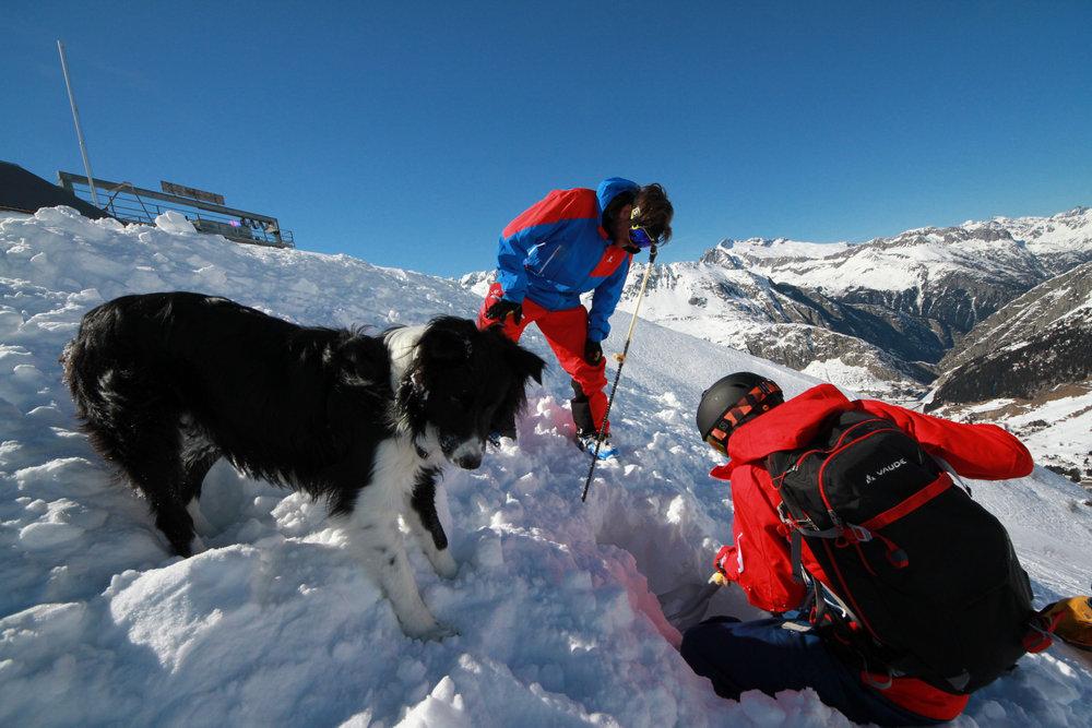 Übung mit der LVS-Suche bei der Freeride-Snowacademy - ©Skiinfo