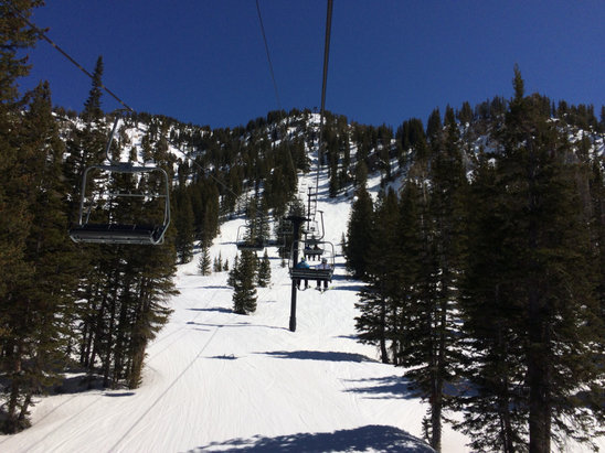 Alta Ski Area - Great skiing on Saturday, repeating today!