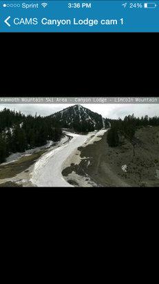 Mammoth Mountain Ski Area - speaks for itself... its sad