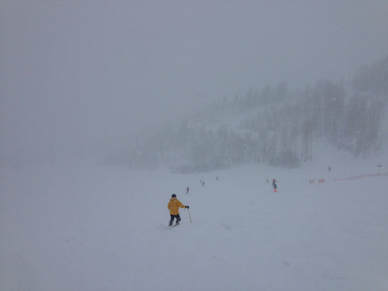 Snowbird - 43 inches in 24 hours! Yesterday was amazing!