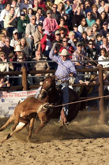Calf roping at the Beaver Creek Rodeo.