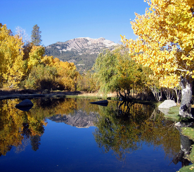 Fall colors in the Mammoth Mountain area.