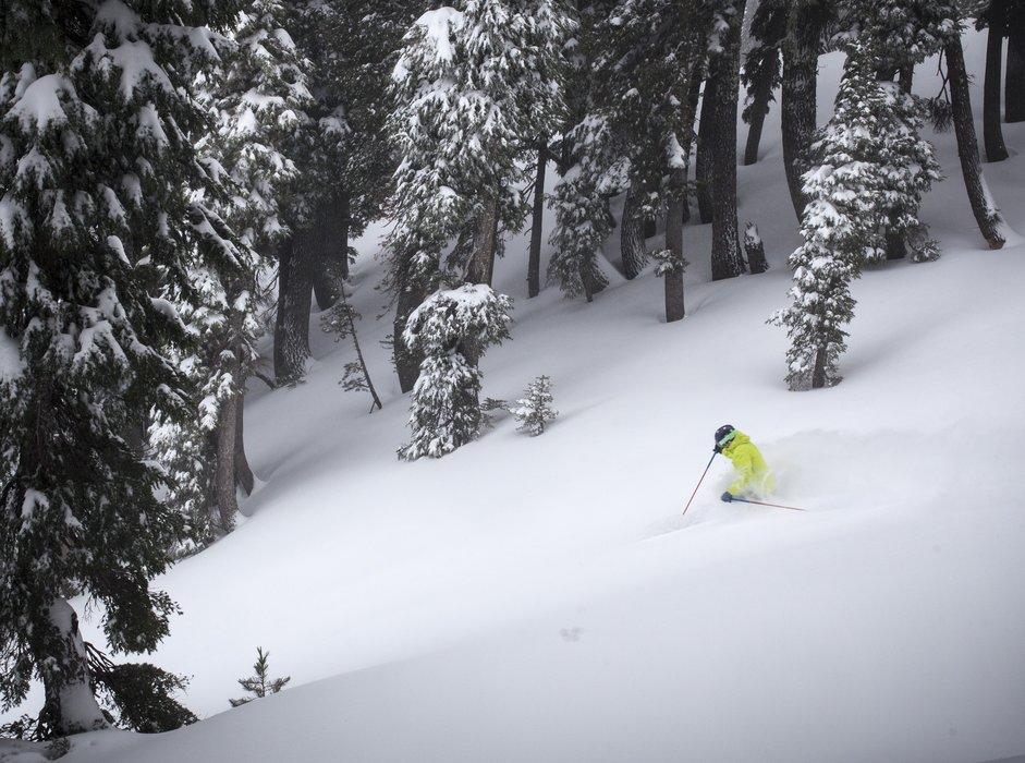 Sinking into powder on Dec. 11, 2015 at Alpine Meadows. - ©Squaw Valley-Alpine Meadows