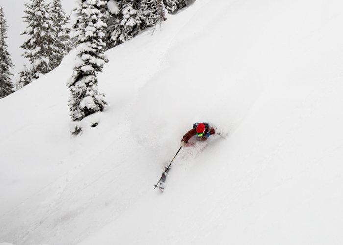 Jackson Hole powder. - ©Jackson Hole Mountain Resort