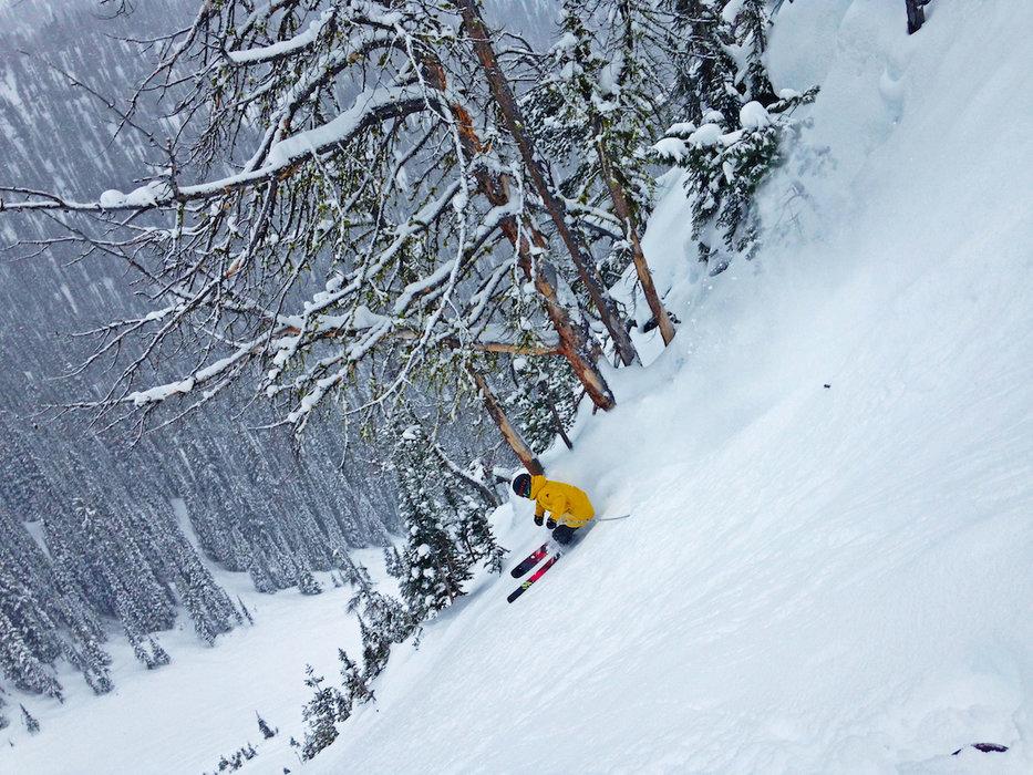 A skier gettin' buck wild at Kicking Horse.  - ©Lane Clark