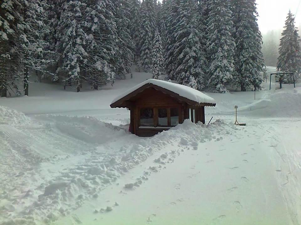 Alpe Cimbra - Folgaria Lavarone Luserna - ©Alpe Cimbra - Folgaria Lavarone Luserna Facebook