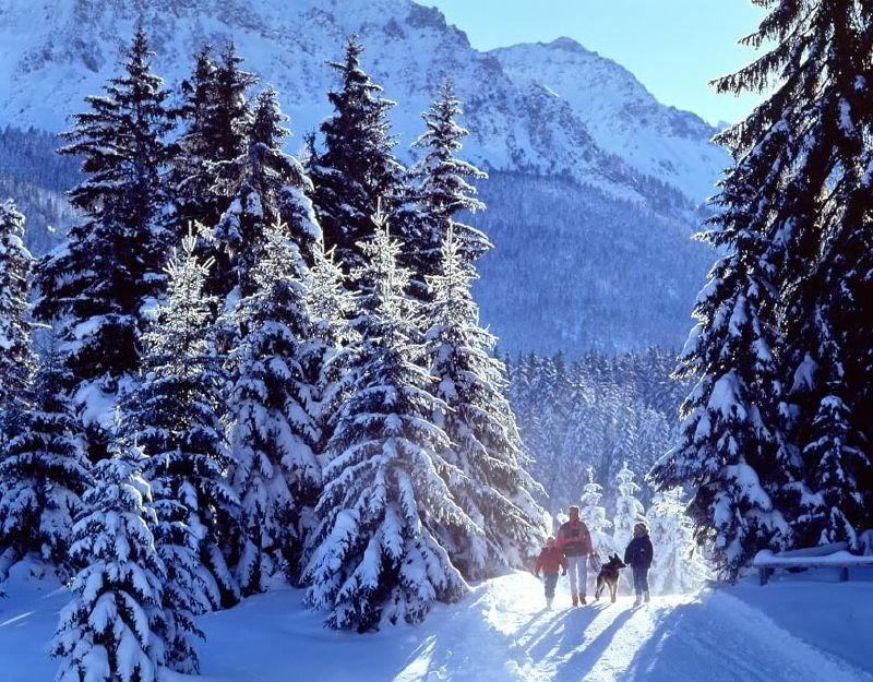 A family hiking in the snowy hills of Lenzerheide.