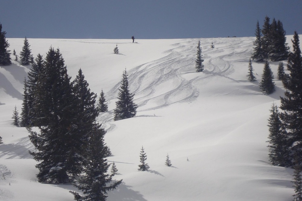 Lots of tracks with Vail Powder Guides.