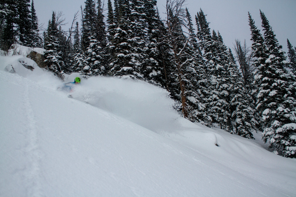 Powder at Jackson Hole. Photo by Julie Weinberger/Jackson Hole Mountain Resort.