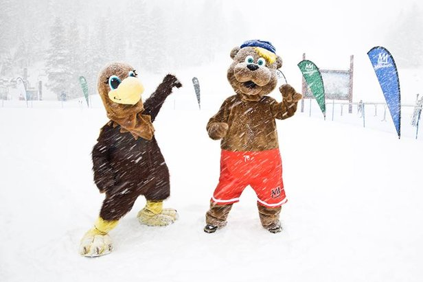 Mammoth Mountain mascots doing some snow-dancing.  - ©Mammoth Mountain
