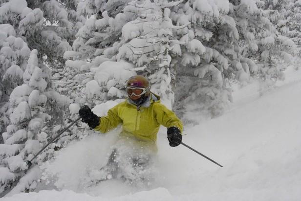 Monarch skier