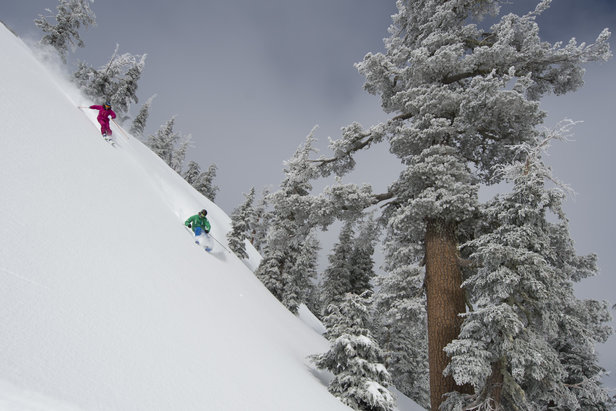 Hitting the steeps together at Squaw Valley. - ©Hank deVre