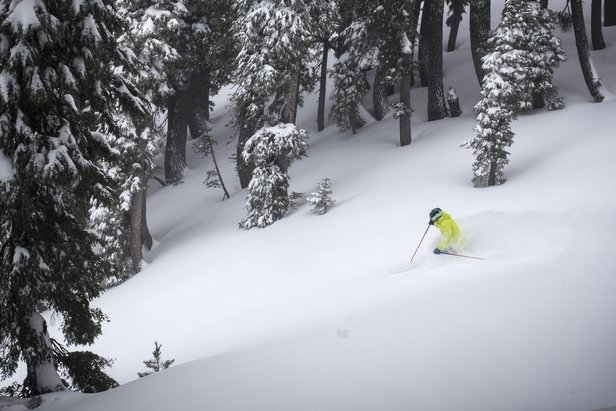 Sinking into powder on Dec. 11, 2015 at Alpine Meadows. - ©Squaw Valley-Alpine Meadows