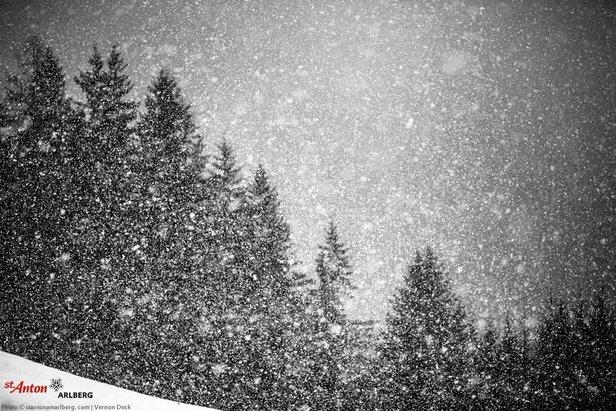Kräftiger Schneefall am Abend des 3. Februar 2016 in St. Anton - ©St. Anton am Arlberg Facebook