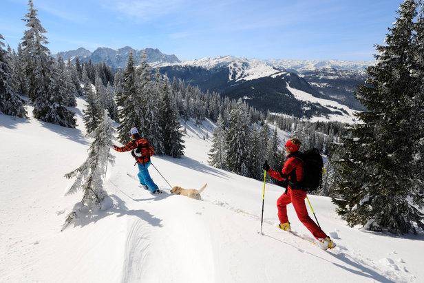 Skitour auf das Dürrnbachhorn, Reit im Winkl - ©Norbert Eisele-Hein