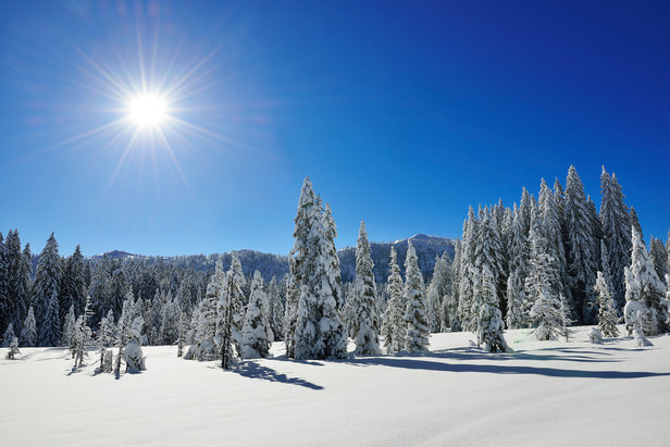 Wunderschöne Winterlandschaft in Reit im Winkl - ©Norbert Eisele-Hein