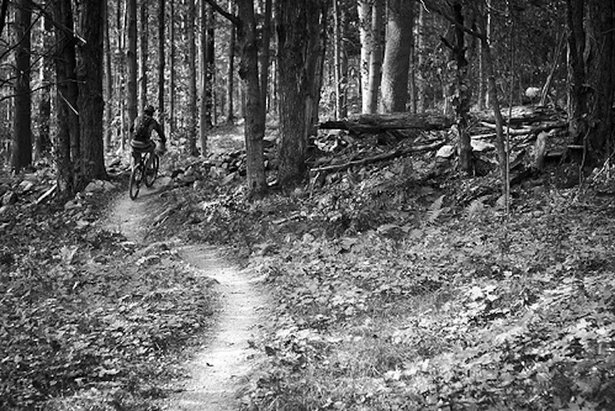 Vermont's highest peak, Mount Mansfield, becomes a biker's dream every summer thanks to singletrack like Kimmer's Trail.  - ©Ryan Thibault