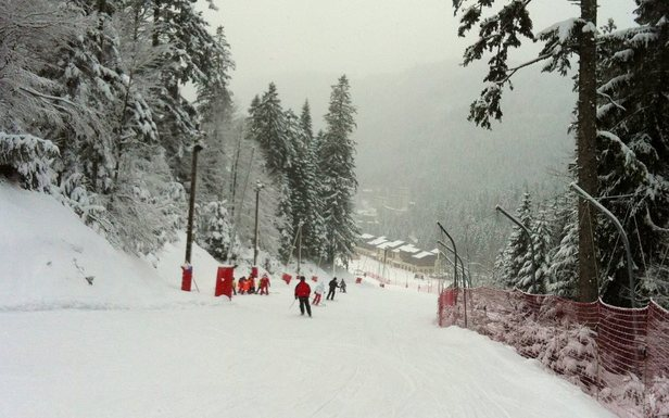 Sur les pistes de la Bresse Hohneck