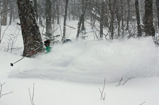 The most recent storm came through in a big way, bringing over a foot of powder to numerous resorts across the region. - ©OpenSnow.com
