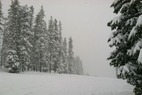 by anonymous user - Fantastic snow today! Thanks