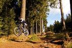 Bikeparks in Niedersachsen - ©Bikepark Braunlage