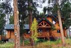 The Bear Cabin - ©from tripadvisor.com