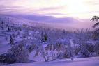 Ski-Weltcup in Levi - ©Levi