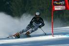 Hölzl und Neureuther mit Goldenem Ski ausgezeichnet - ©Peter Lehner