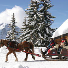 Take a horse-drawn sleigh in Avoriaz, France - ©S. Lerendu / Avoriaz Tourisme
