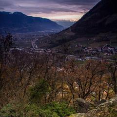 Boulder in Algund - ©Frieda Knorke