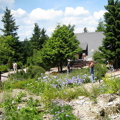 Rennsteiggarten in Oberhof - ©mjk23