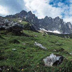 Der Adlerweg führt entlang der Wände des Wilden Kaisers. - ©Tirol Werbung/Klaus Kranebitter