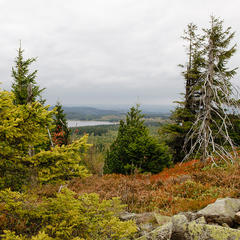Wandertipp der Woche: Drei-Berge-Tour im Erzgebirge - ©Tourismusverband Erzgebirge e.V./R. Gaens