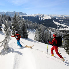 Skitour Dürrnbachhorn - ©Norbert Eisele-Hein