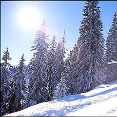 Skifahrer im Brixental - ©Brixental