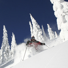 Whitefish powder and snowghosts (WMR/Brian Schott)