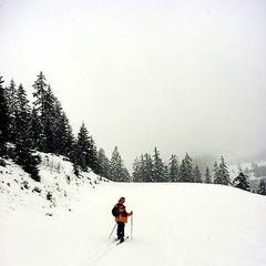 Im unteren Bereich der Tour (identisch mit der Skiabfahrt der Wannenjochlifte) - ©XNX GmbH